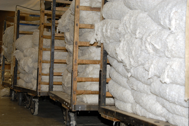 Raw cotton waiting to be milled.