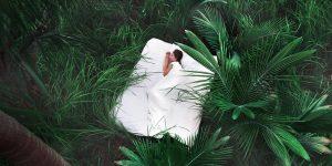 bio sleep organic mattress